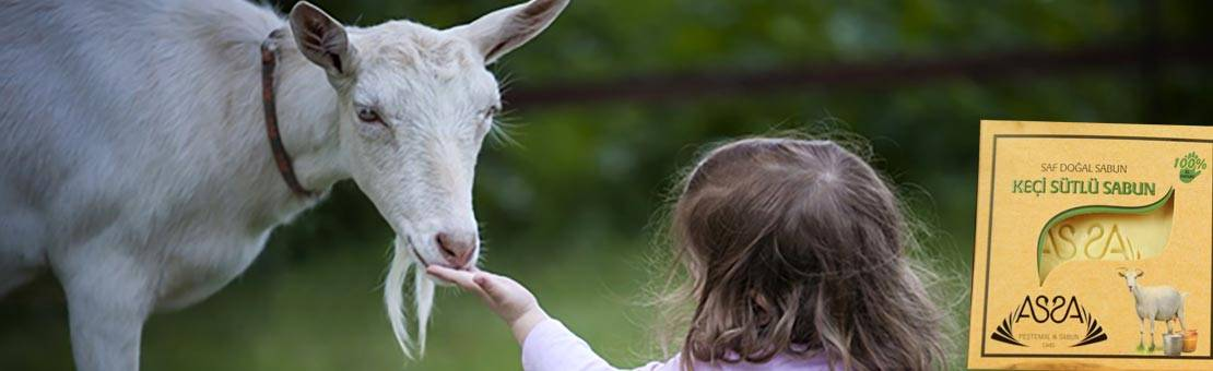Savon au lait de chèvre 100% naturel